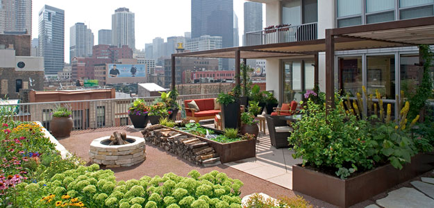 modern rooftop garden and lounge area.