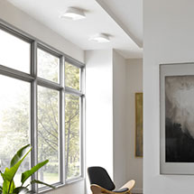 Living Room Flush Mount Ceiling Lights