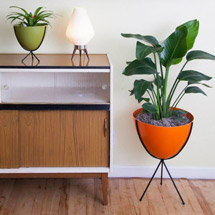 Home Accessories + Decor Indoor Gardening