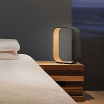 Floor + Table Lamps LED Table Lamps