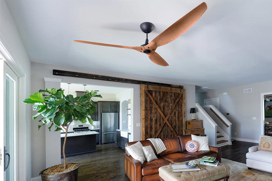 Large-Scale Ceiling Fans